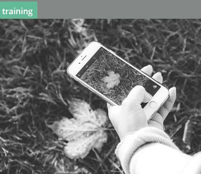 11.2-img-overzicht-social learning