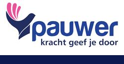 4.2-img-logo pauwer